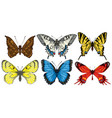 Set of various bright colorful butterflies