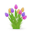 spring floral bundle with fresh colorful tulips on vector image vector image