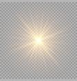 brilliant golden rays vector image vector image