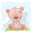 cute drawn teddy vector image vector image