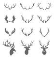 Hand Drawn Deer Antlers vector image vector image