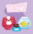pet shop haired little dog fish and bones food vector image vector image