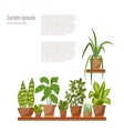 Set of INDOOR plant isolated vector image vector image