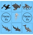Set of marine animals card with space for text vector image