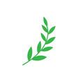 floral nature icon decorative element design vector image vector image