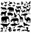 icons mammalian vector image vector image