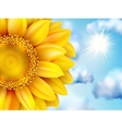 Beautiful sunflower against blue sky EPS 10 vector image vector image