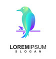 colorful bird logo premium vector image vector image