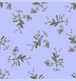drawing meadow bloom flowers floral seamless vector image