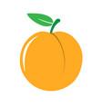 garden peach icon vector image vector image