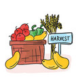 harvest - basket with fruits and vegetables vector image vector image