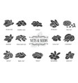 nuts and seeds glyph icons vector image
