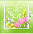 spring sale lettering on a blur green vector image vector image
