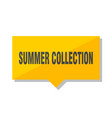 summer collection price tag vector image vector image