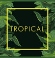 tropical leave palm tree poster vector image vector image