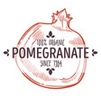 100 percent organic pomegranate label with whole vector image vector image