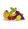 banana strawberry lemon grapes fruits food vector image