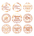 Gluten free design elements vector image vector image