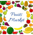 fruits icons in round shape for market banner vector image