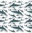 a dolphin seamless pattern vector image