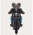 ferocious goat head biker colorful concept vector image vector image
