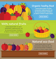 fruits organic banner horizontal set flat style vector image