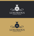 luxury floral decorative logo vector image