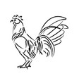 outline draw chicken vector image vector image