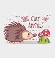porcupine in forest cute cartoon vector image