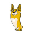 portrait of pembroke welsh corgi dog image vector image