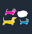 template dachshund vector image