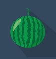 watermelon cartoon flat icondark blue background vector image vector image