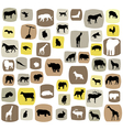 animal abstract vector image vector image
