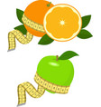 green apple and orange with measurement vector image