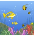 Underwater with coral reefs and tropical fishes vector image