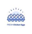white chicken eggs in box package dozen vector image