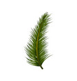 christmas decoration tree pine leaf vector image vector image
