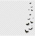 flying bats on transparent background vector image