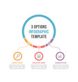 infographic template with three options vector image vector image