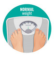normal weight human feet on scales isolated on vector image vector image