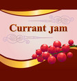 red currant jam label design template vector image