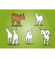 small goats on the white vector image
