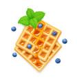 belgian waffle blueberries vector image