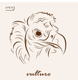Black vulture vector image vector image