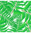 seamless pattern of tropical palm leaves vector image vector image