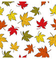 seamless pattern with colorful autumn maple leaves vector image vector image