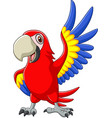cartoon macaw waving vector image vector image