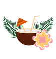 coconut cocktail flower leaves tropical summer vector image vector image