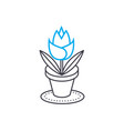 growing of house flowers linear icon concept vector image