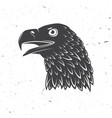 head golden eagle bird vector image